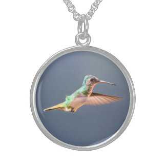 Hummingbird Round Necklace Sterling Silver