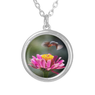 Hummingbird Round Pendant Necklace