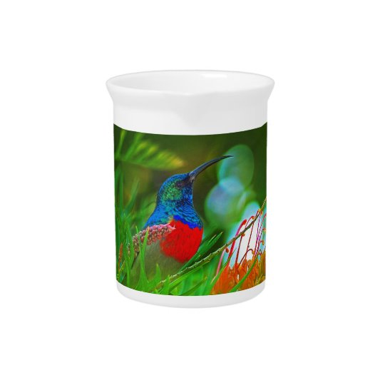 Hummingbird ruby throated beverage pitchers