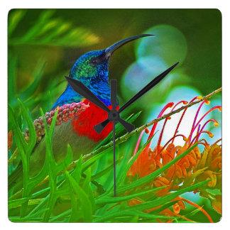 Hummingbird ruby throated square wall clock