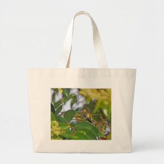 Hummingbird Sitting in a Privet Tree Jumbo Tote Bag