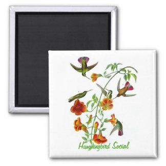 Hummingbird Social Magnet