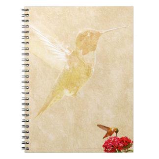 Hummingbird - Spiral Notebook