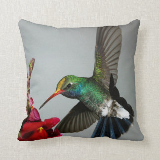 Hummingbird spring decor pillow