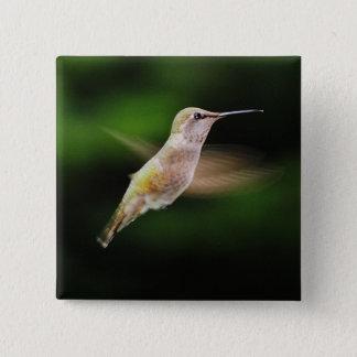 Hummingbird Square Button