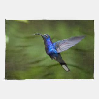 HUMMINGBIRD TOWELS