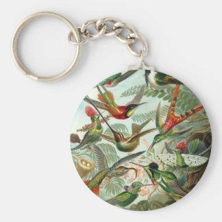 Hummingbird (Trochilidae) by Haeckel Keychain