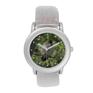 Hummingbird Wristwatches