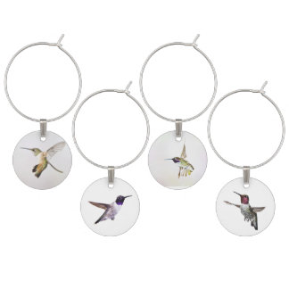 Hummingbird Wine Charms
