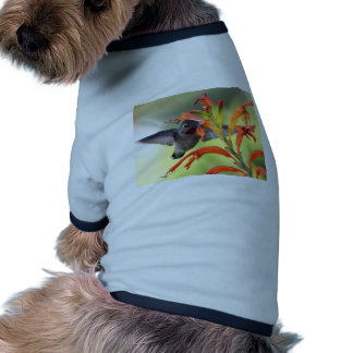 Hummingbird with Lily Caught In Motion Doggie Tee Shirt