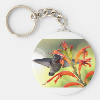 Hummingbird with Lily Caught In Motion Keychains