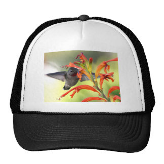 Hummingbird with Lily Caught In Motion Trucker Hat