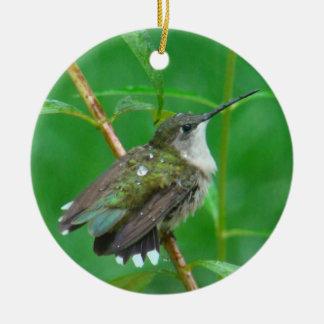 Hummingbird with Wings Spread Round Ceramic Decoration