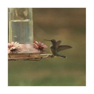 Hummingbird, Wood Print. Wood Print