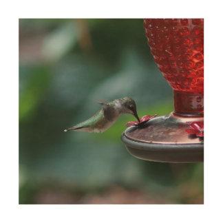 Hummingbird, Wood Print. Wood Prints