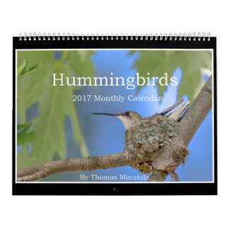 Hummingbirds 2017 Monthly Calendar By Tom Minutolo