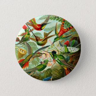 Hummingbirds 6 Cm Round Badge