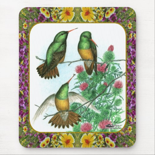 Hummingbirds and Flowers #1 Mousepad