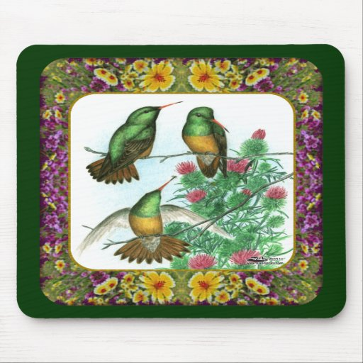 Hummingbirds and Flowers #1 Mousepads