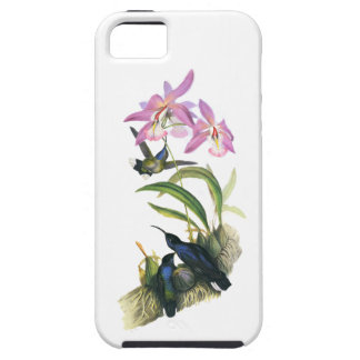 Hummingbirds and Pink Orchids iPhone 5 Cover