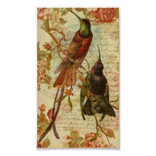 Hummingbirds and Roses Poster