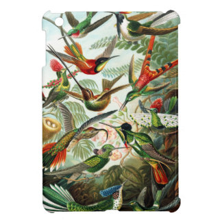 Hummingbirds by Ernst Haeckel iPad Mini Cover