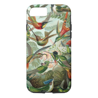 Hummingbirds by Ernst Haeckel, Vintage Birds Trees iPhone 8/7 Case
