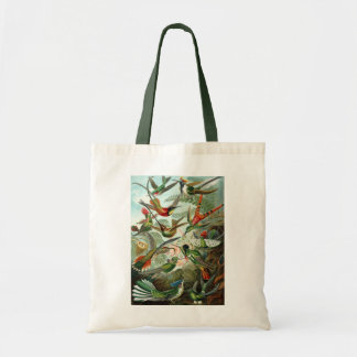 Hummingbirds by Ernst Haeckel, Vintage Birds Trees Tote Bag