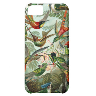 Hummingbirds Cover For iPhone 5C