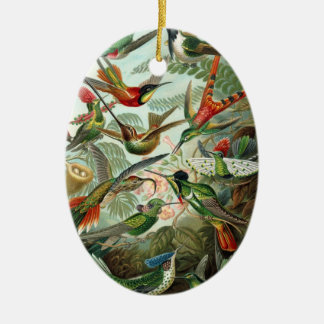 Hummingbirds Christmas Ornament