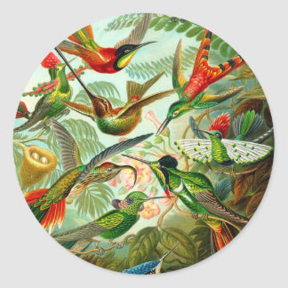 Hummingbirds Classic Round Sticker