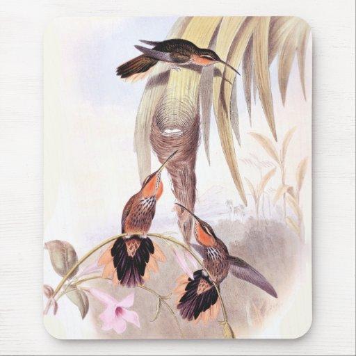 Hummingbirds & Flowers Art Mousepad Mouse Pads