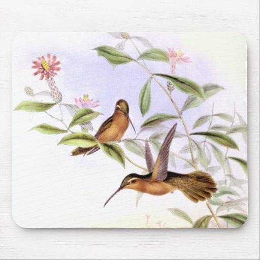 Hummingbirds & Flowers Art Mousepad Mouse Pad