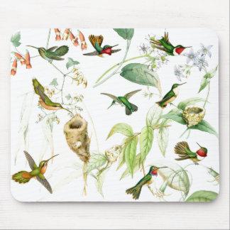 Hummingbirds & Flowers Art Mousepad