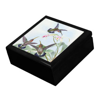 Hummingbirds Flowers Birds Animals Gift Box