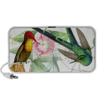 Hummingbirds & Flowers Doodle Speaker