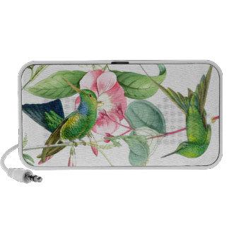 Hummingbirds & Flowers Doodle Speaker Travel Speakers