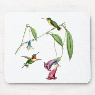 Hummingbirds & Flowers Mousepad