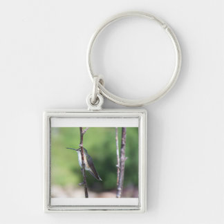 Hummingbirds Silver-Colored Square Key Ring