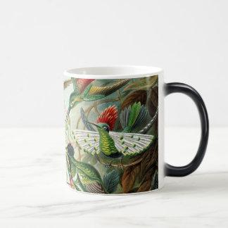 Hummingbirds Magic Mug
