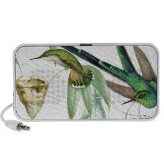 Hummingbirds & Nest Doodle Speaker