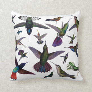 Hummingbirds pillow