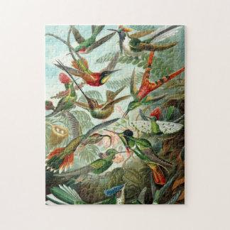 Hummingbirds Puzzles