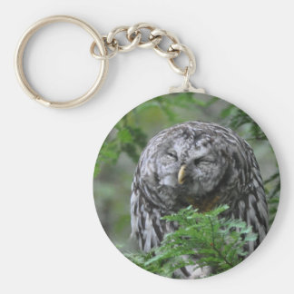 Humorous Barred Owl Basic Round Button Key Ring