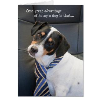 Humorous Birthday Card - Dog Wearing a Tie