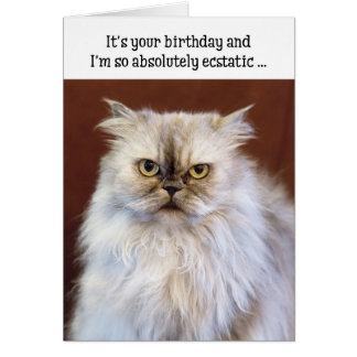 Humorous Birthday Card - Ecstatic Persian Cat