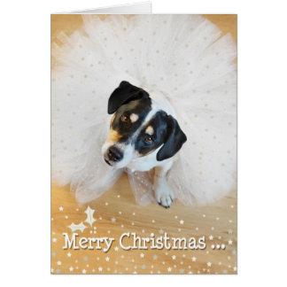 Humorous Christmas Card - Dog Wearing Tutu 3