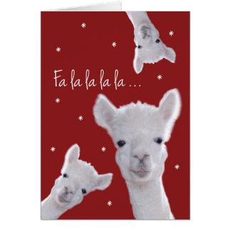 Humorous Christmas Carol Card, Llamas & Snowflakes