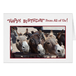 Humorous Donkey Group Birthday, From All of Us Greeting Card
