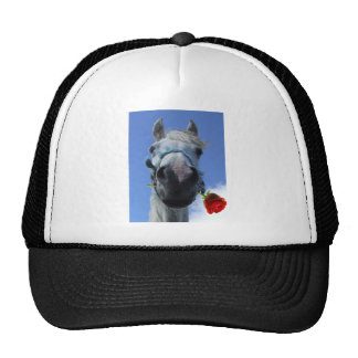 Humorous Horse and Rose love theme Cap